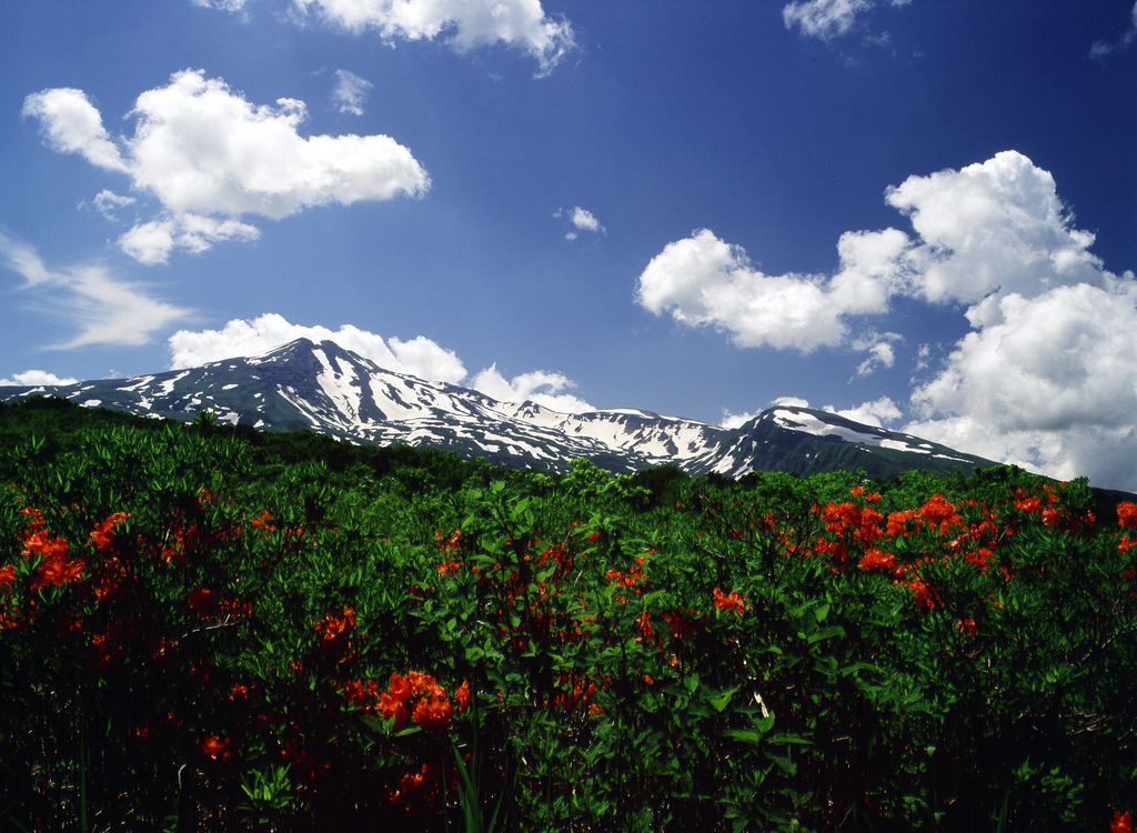 Mt.Chokai 9