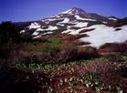 Mt.Chokai 1